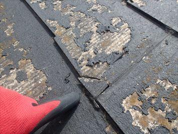 江戸川区江戸川にお住まいのK様、現地調査を行い屋根カバー工法をご提案しました