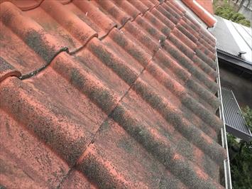 八王子市別所にてセメント瓦の点検を行いました、セメント瓦は現在手に入りにくい屋根材です