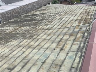 北面の屋根の汚れ