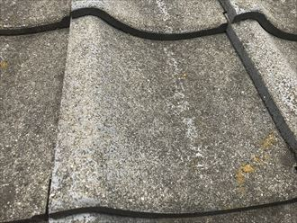 セメント瓦表面に塗膜の無い状態
