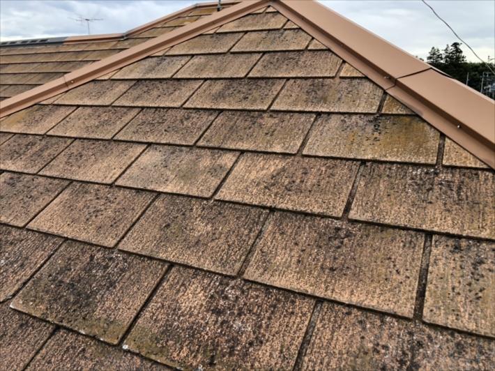 スぺリアルNEOの屋根