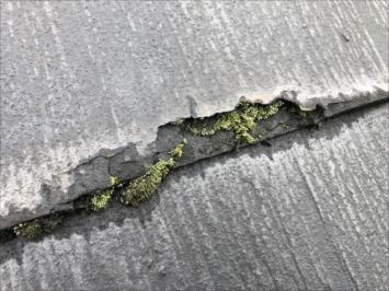 調布市深大寺南町でパミールの劣化を確認いたしました