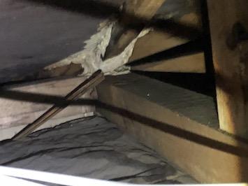 狛江市東野川で屋根からの雨漏りを小屋裏から点検しました