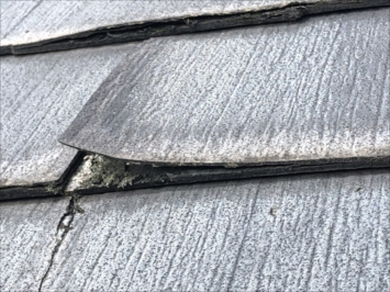 練馬区石神井台で調査した屋根はニチハのパミールで葺かれていました