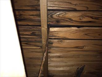 野地板、垂木にも腐蝕