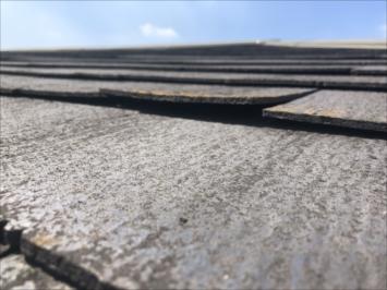 反った屋根