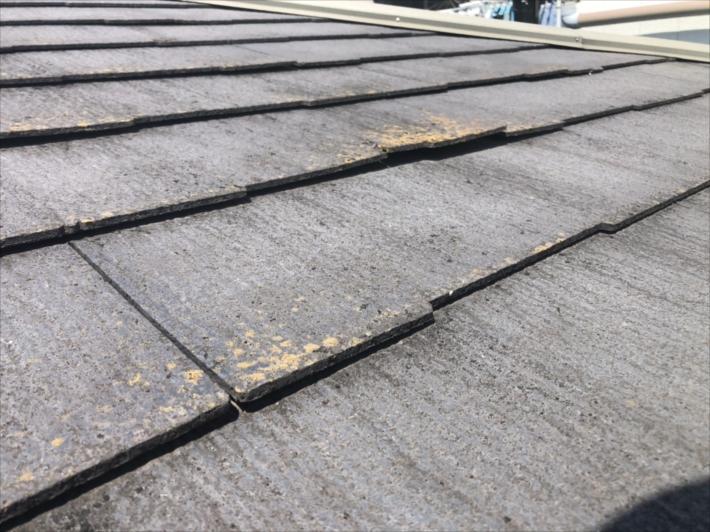 反り返った屋根