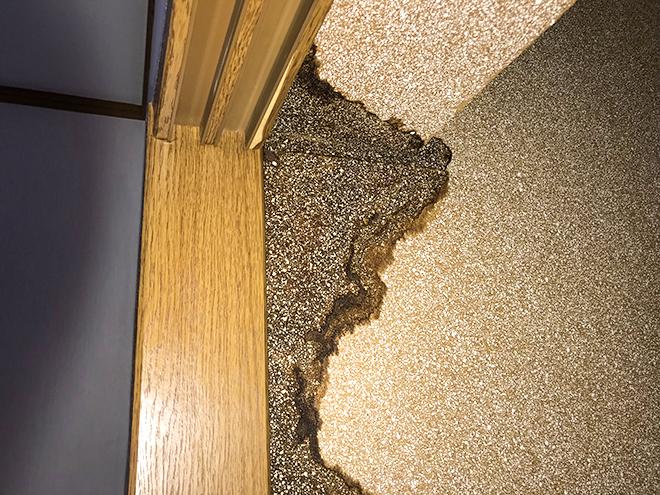 三鷹市井口で陸屋根の排水口からの雨漏りにウレタン防水による防水工事のご提案